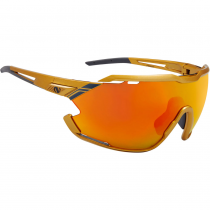 Очки NORTHUG GOLD POLARIZED GOLD Standard